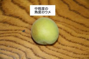 中程度の熟度の梅